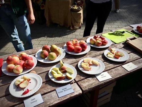 Apple festival at Mainau Island