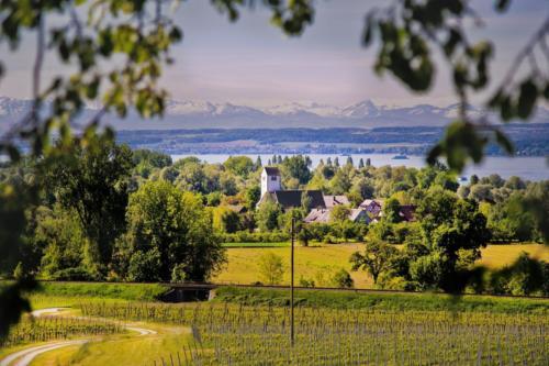 Rolling hills around Konstanz, Southern Germany